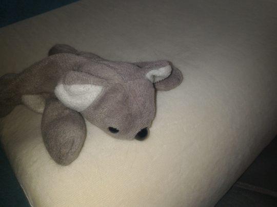 Ортопедична подушка: кольорові сни вбудовані за замовчуванням :) Фото 2
